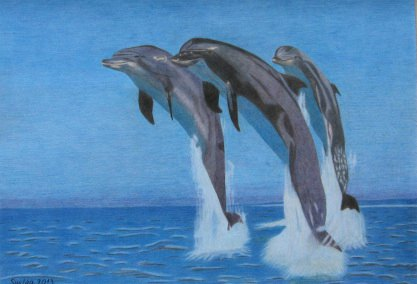 Crtež - Delfini, olovke u boji