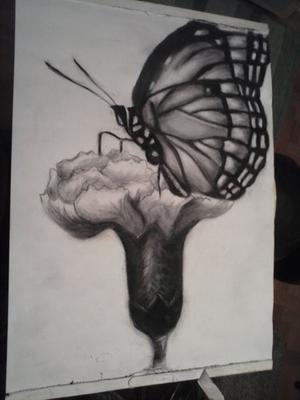 Leptir na cvijetu