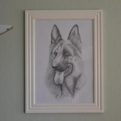 Crtež - Pas